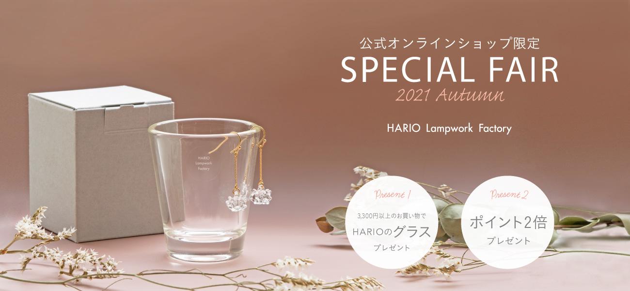 Special Fair 2021 Autumn